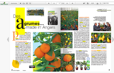 Agrumes made in Angers dans le truffaut magazine ete 2014
